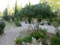 cementerio sena 53