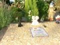 cementerio sena 51