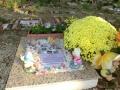 cementerio sena 52