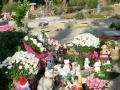 sena cementerio crematorio 11
